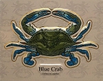 Blue Crab Fridge Magnet