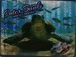 Outer Banks North Carolina with Sea Turtle Foil Fridge Magnet
