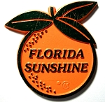 Florida Sunshine Orange Shaped Fridge Magnet