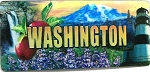 Washington Panoramic 3D Fridge Magnet