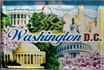Washington D.C. Montage Glass Fridge Magnet