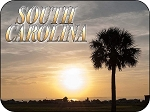 South Carolina Sunrise with Palm Tree Fridge Magnet