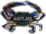 Maryland Blue Crab Foil Design Fridge Magnet
