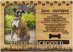Boxer Uncropped Engraved Wood Picture Frame Magnet