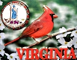 Virginia with State Seal Fridge Magnet