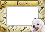 Poodle Picture Frame Fridge Magnet