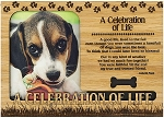 A Celebration of Life Pet Engraved Wood Picture Frame Magnet