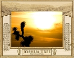 Joshua Tree National Park Laser Engraved Wood Picture Frame