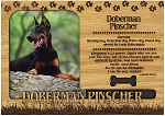 Doberman Pinscher Engraved Wood Picture Frame Magnet