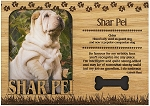 Shar Pei Engraved Wood Picture Frame Magnet