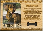 Dachshund Laser Engraved Wood Picture Frame Magnet