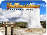 Yellowstone National Park Old Faithful Geyser Fridge Magnet