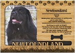 Newfoundland Engraved Wood Picture Frame Magnet