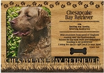 Chesapeake Bay Retriever Engraved Wood Picture Frame Magnet