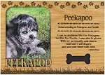 Peekapoo Engraved Wood Picture Frame Magnet