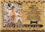 Black Mouth Cur Engraved Wood Picture Frame Magnet