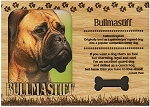 Bullmastiff Engraved Wood Picture Frame Magnet