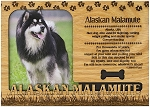 Alaskan Malamute Engraved Wood Picture Frame Magnet