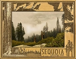 Sequoia National Park with Tree's Laser Engraved Wood Picture Frame