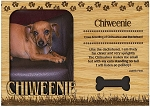Chiweenie Engraved Wood Picture Frame Magnet