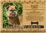 Brussels Griffon Engraved Wood Picture Frame Magnet