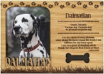Dalmatian Engraved Wood Picture Frame Magnet