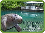 Homosassa Springs Wildlife State Park Florida with Manatee Fridge Magnet