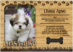 Lhasa Apso Engraved Wood Picture Frame Magnet