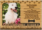 Staffordshire Terrier Engraved Wood Picture Frame Magnet