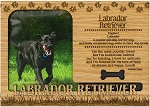 Labrador Retriever Engraved Wood Picture Frame Magnet