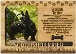 Scottish Terrier Engraved Wood Picture Frame Magnet