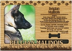 Belgian Malinois Engraved Wood Picture Frame Magnet