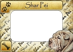 Shar Pei Picture Frame Fridge Magnet