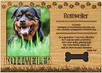 Rottweiler Engraved Wood Picture Frame Magnet