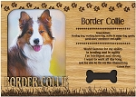 Border Collie Engraved Wood Picture Frame Magnet