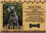 Great Dane Engraved Wood Picture Frame Magnet