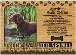American Water Spaniel Engraved Wood Picture Frame Magnet