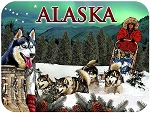 Alaska Dog Sledding and Northern Lights Fridge Magnet