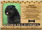 Bouvier Des Flandres Engraved Wood Picture Frame Magnet