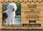 Old English Sheepdog Engraved Wood Picture Frame Magnet