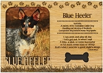 Blue Heeler Engraved Wood Picture Frame Magnet
