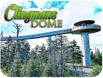 Clingmans Dome Great Smoky Mountains Tennessee Fridge Magnet