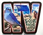 Nevada Artwood Initial Fridge Magnet Design 19
