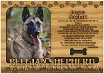 Belgian Shepherd Engraved Wood Picture Frame Magnet