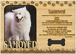 Samoyed Engraved Wood Picture Frame Magnet