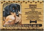 Miniature Pinscher Engraved Wood Picture Frame Magnet