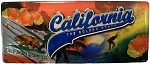 California Foil Panoramic Fridge Magnet
