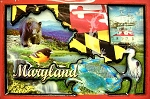 Maryland Cartoon Collage Fridge Magnet