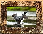 Loon Laser Engraved Wood Picture Frame (5 x 7)