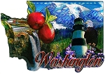 Washington State Jumbo Artwood Foil Fridge Magnet
